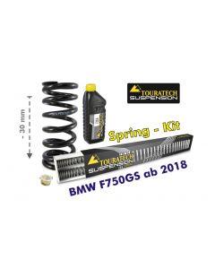 Tieferlegung um 30mm für BMW F750GS ab 2018 Austauschfedern